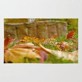Autumn day 2016 Rug