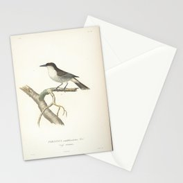 Loggerhead Kingbird6 Stationery Cards