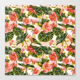 Flowering garden nasturtiums Canvas Print