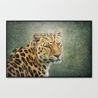 leopard Canvas Prints featuring Leopard by Pauline Fowler ( Polly470 )