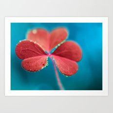 You turn my heart every which way - pink clover macro. Art Print