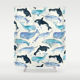 Whales, Orcas & Narwhals Shower Curtain