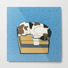 Sleeping Cat part 1 Metal Print