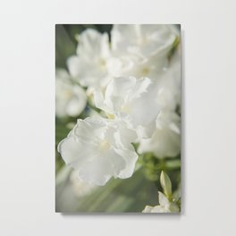 Luminous White 2 Metal Print
