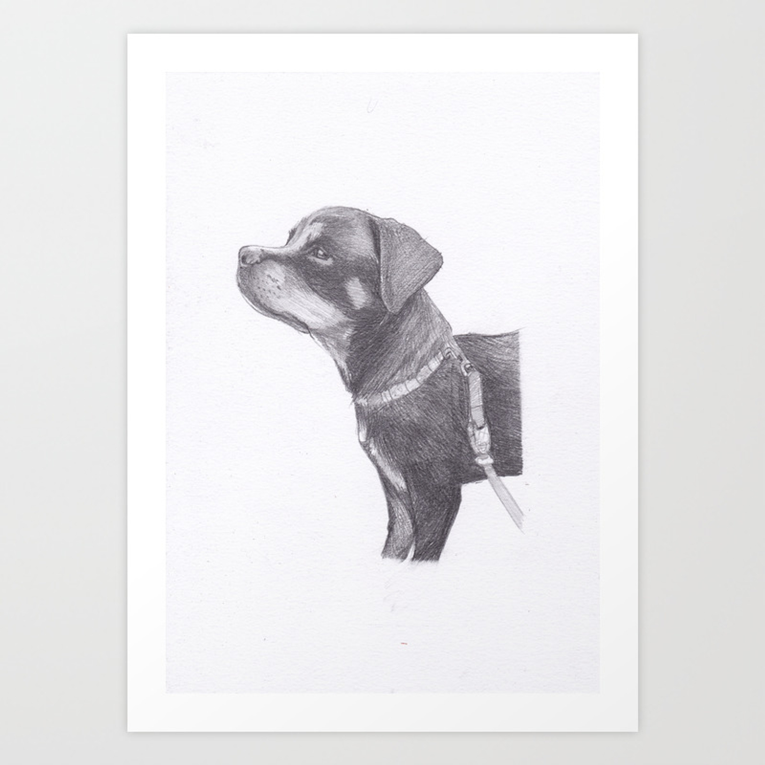 Rottweiler Puppy Art Print By Moii Arts Society6