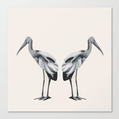 Handbirds Canvas Print