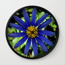 Bright Blue Daisy Wall Clock