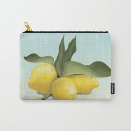 Vintage Lemons Carry-All Pouch