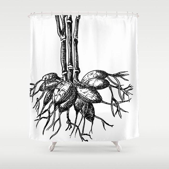 Dahlia Shower Curtain By Kejla