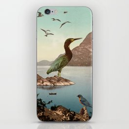 Bird Sanctuary iPhone Skin