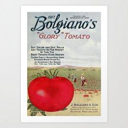 Bolgiano's Catalogue 1917 - Glory Tomato Art Print