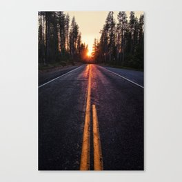 Goodbye My Friends Canvas Print