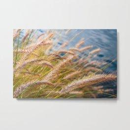 Lakeside Grass Metal Print
