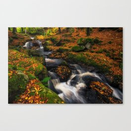 Cloghleagh River in Wicklow Mountains - Ireland (RR249) Canvas Print