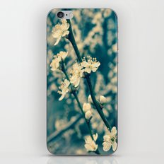 Pretty Blossom iPhone & iPod Skin