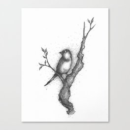 Mockingbird Canvas Print