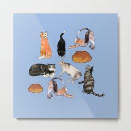 cats cats cats on light blue Metal Print