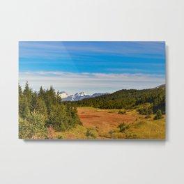 Chugach State_Park, Kenai_Peninsula, Alaska Metal Print