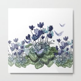 """Spring garden of blue cyclamen and butterflies"" Metal Print"