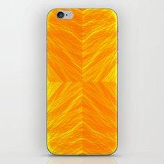 Golden Suitcase iPhone & iPod Skin