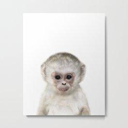 Baby Monkey Metal Print