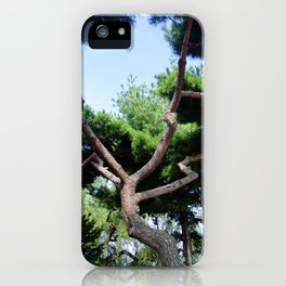 Seoul Tree Branches iPhone Case