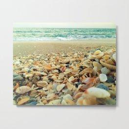 Shore and Shells Metal Print