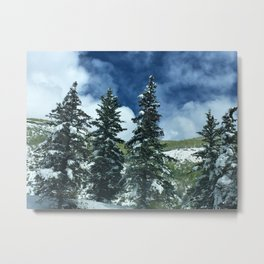 Trees on the mountainside Metal Print