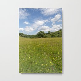 Early Summer Metal Print
