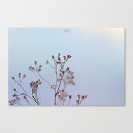 Looking at the river Canvas Print
