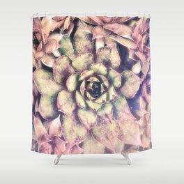 Sempervivum, Succulent Red  Mandala Shower Curtain