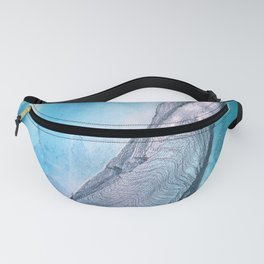 Sublime Fanny Pack