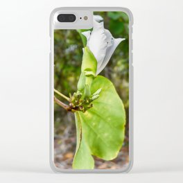 Delicate butterfly tree flower Clear iPhone Case
