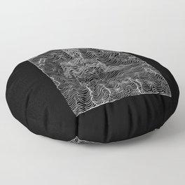 Spectral Lines Floor Pillow