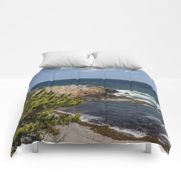 40 steps beach Nahant Comforters