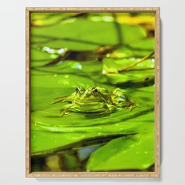 Frog On A Lily Serving Tray