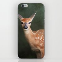 fawn iPhone & iPod Skins featuring Fawn by Jai Johnson