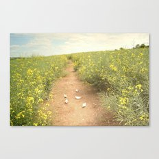 meadow of paperboats Canvas Print