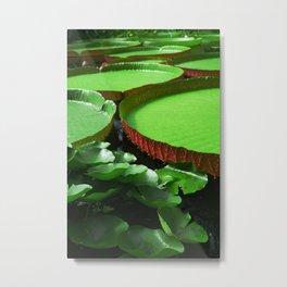 Swampy Lilies Metal Print