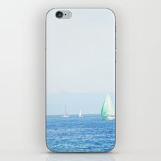 Alpine Heaven iPhone & iPod Skin