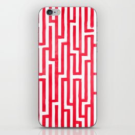 Enter the labyrinth iPhone Skin