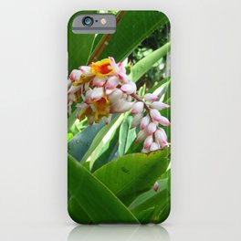 Hawaiian Flower 5 iPhone Case