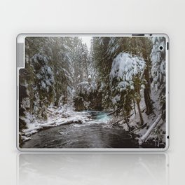A Quiet Place - Pacific Northwest Nature Photography Laptop & iPad Skin