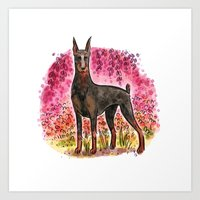 doberman Art Prints featuring Doberman by Renee Kurilla