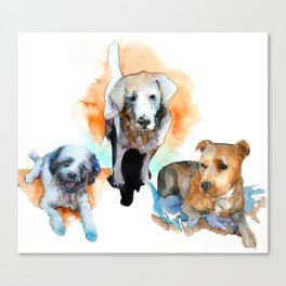 dogs#1 Canvas Print