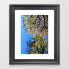 Underbranches Framed Art Print