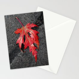 red maple leaf Stationery Cards