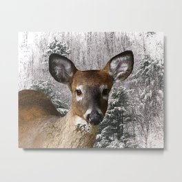 Deer and Frosty Hills Metal Print