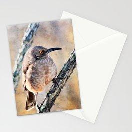 Desert Bird Morning Light-Barbara Chichester Stationery Cards