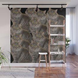 a dozen cat Wall Mural